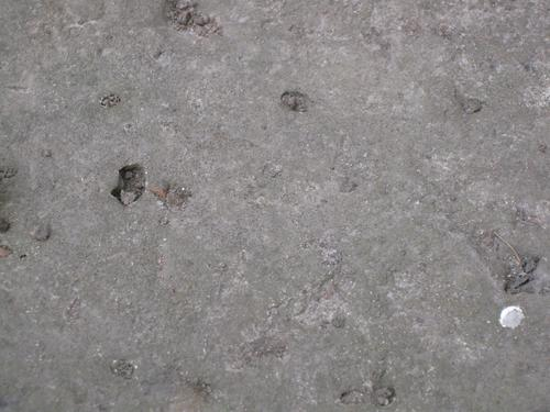 Выбоины неизвестного происхождения и помет птицы на основании (западная сторона)