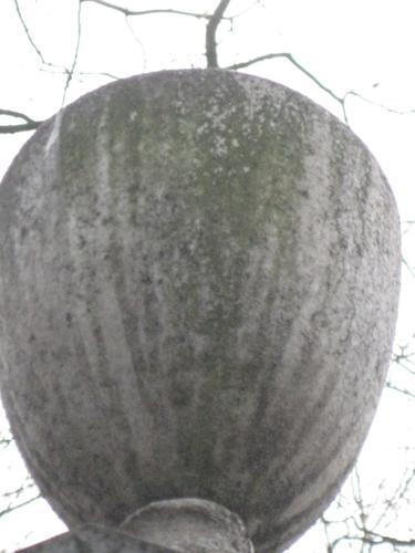 Налет водорослей на камне (восточная сторона)