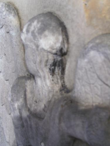 Начало образование первичной гипсовой горки на волосах ангела. Восточная сторона. Май 2011 г.
