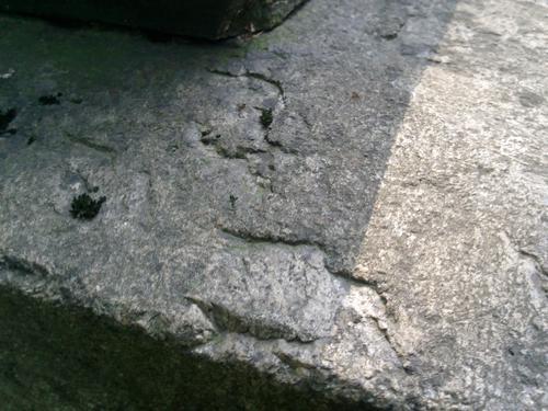 Начало расслаивания на фундаменте из серого гранита. Южная сторона фудамента. Май 2011.
