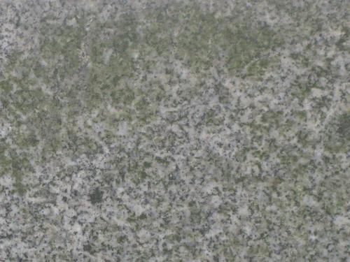 Налет водорослей (южная сторона)