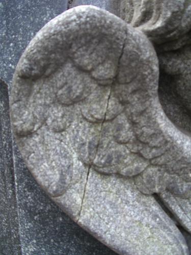 Трещина на крыле ангела из серого мелко-среднезернистого гранита. Северо-восточная сторона. Май 2011.