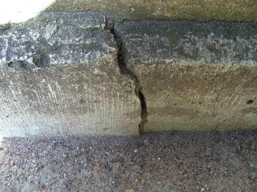 Трещина и колонии лишайников на фундаменте из серого плитчатого известняка.