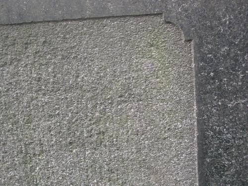 Налет водорослей на плите (южная сторона)