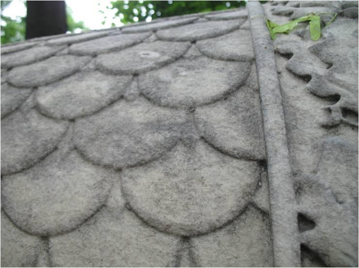 Образец №1 Aureobasidium pullulans Penicillium decumbens Alternaria alternata Fusarium solani Cladosporium cladosporioides Coniosporium sp