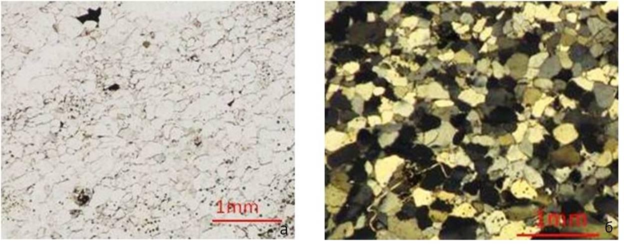 Микрофотографии шлифа шокшинского кварцита (обр.В-25): а) николи параллельны, б) николи скрещены.  Мономинеральная порода, сложенная агрегатами из разновеликих изометричных зерен кварца(0,05-1,5 мм).В межзерновом пространстве присутствуют чешуйки слюды, а также оксиды и гидроксиды железа.