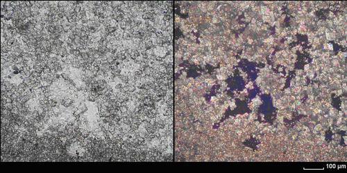 Фотографии шлифов известкового туфа в параллельных и скрещенных николях.