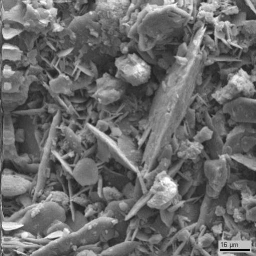 Электронномикроскопический снимок поверхности образца 4. Видны  пластинчатые кристаллы гипса, округлые клетки водорослей, а также скопления тонкодисперсного неорганического вещества с вероятным включением в него элементов биогенного происхождения. Видны отдельные обломки мрамора.