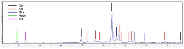 Кварц – много,  Альбит – существенно Микроклин – существенно,  Слюда (биотит или мусковит) – мало