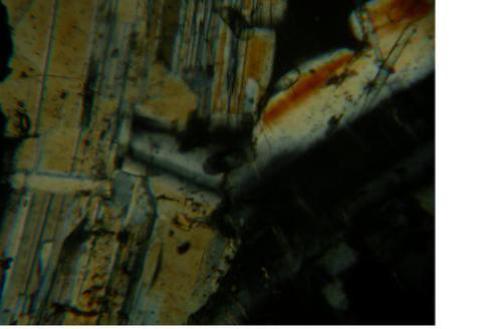 Диорит. Фотография шлифа. Николи скрещены. Увеличение x100.  Результаты исследования шлифа показали, что плагиоклаз представлен, в основном, крупными (до 12 мм) лейстовидными и таблитчатыми кристаллами. Присутствуют мелкие (до 0,3 мм) таблитчатые кристаллы пироксена, пластинчатые (до 0,8 мм) кри-сталлы биотита и зёрна рудного (магнетит?) минерала, которые образуют срастания. В промежутках между зёрнами располагаются ксеноморфные выделения кислого плагиоклаза, в котором слабо проявлено двойникование.