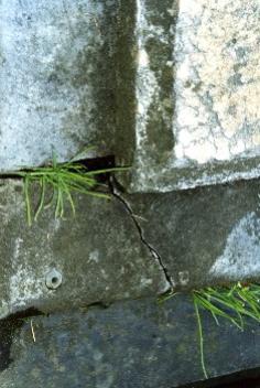 Фрагмент надгробной плиты.Видно отшелушивание, трещина, налеты биологического происхождения и атмосферные грязевые отложения.  Фото ноября 2003 г.