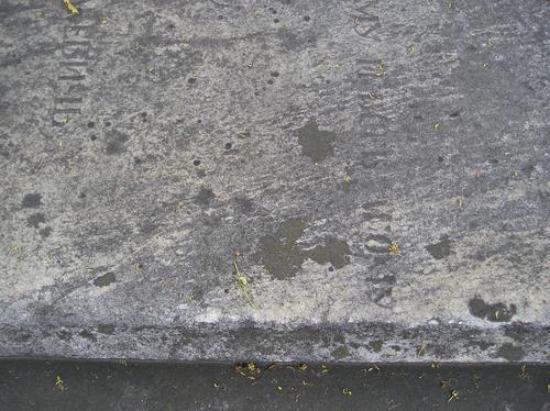 Фрагмент надгробной плиты.Видны округлые образования лишайников. Фото августа 2004 г.