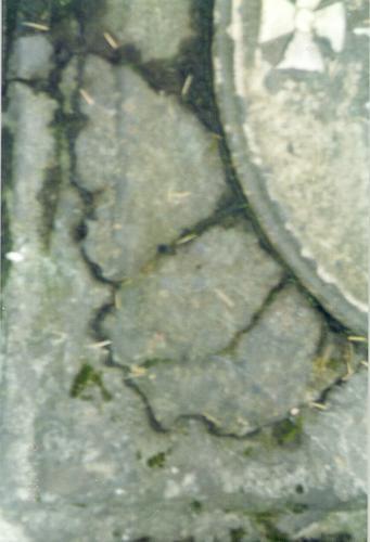 Западная часть саркофага из путиловского известняка. Видны механические повреждения, отслаивание известняка. Фото ноября 2003 г.