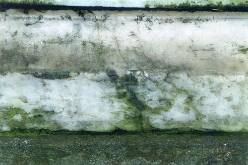 Северная сторона нижних плит постамента из белого, крупнозернистого мрамора. Виден биологический налет, трещины. Фото ноября 2003 г.
