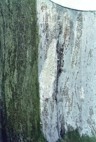 Фрагмент полуколонны. Видно отслаивание г/п, водоросли. Фото ноября 2003