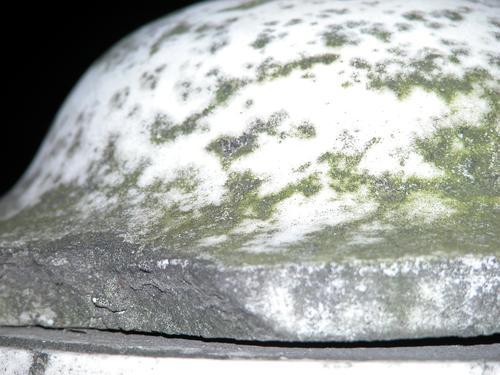 Фрагмент вазы-светильника. Западная сторона. Видны водоросли, округлые образования грибов, атмосферные грязевые отложения. Фото ноября 2003 г.