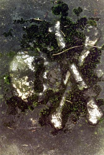 Фрагмент надгробной плиты из известкового песчаника. Виден сплошной налет из атмосферных грязевых отложений и налетов биологического происхождения. Фото ноября 2003 г.